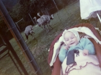 1984 06 11 Karin im Wildpark Altenfelden