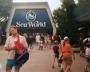 1993 06 23 Orlando Sea World bei SZ Tournee