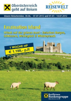 2012-irland-bankenreise