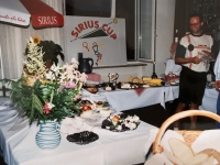 1994 07 17 Sirius Cup Turnerheim