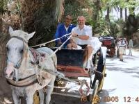 2005 09 16 Tunesien Seniorenbadereise Oase Gabes