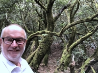 Spanien Nationalpark Garajonay Kanaren auf Insel La Gomera 1