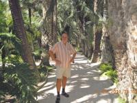 Spanien-palmenhain-von-elche